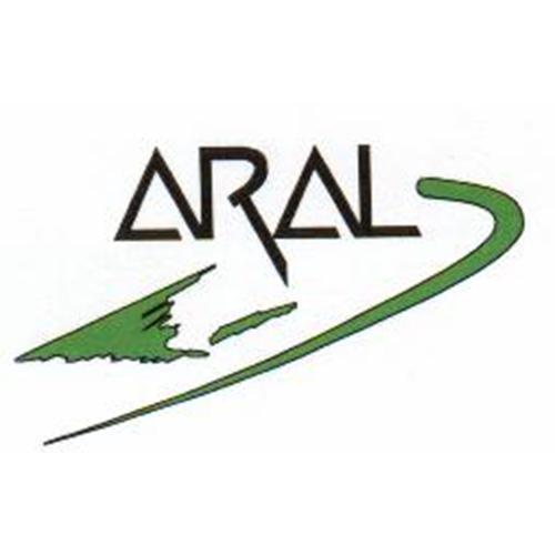 Representaciones Aral